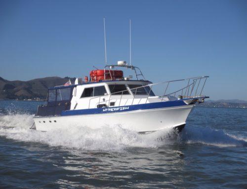 2014 SF Boat Support navigates record breaking Swim from the Farallon Islands